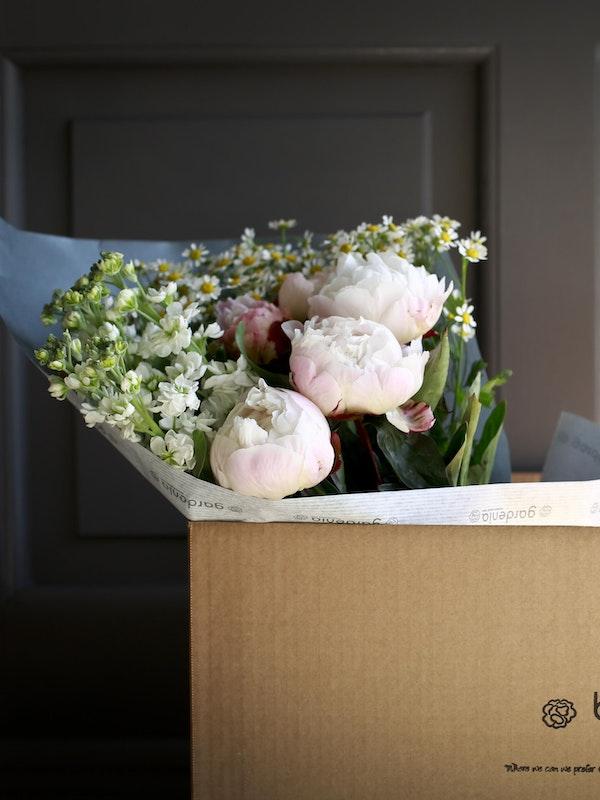 Celebration Bloomsbox