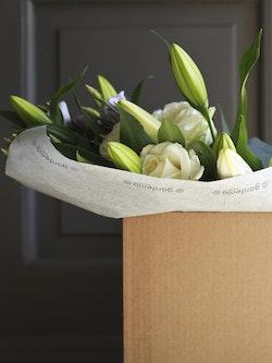 Lilies Bloomsbox