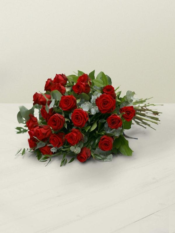 Two Dozen Red Roses Lying